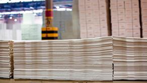 Produção de celulose no país soma mais de 5 milhões de toneladas