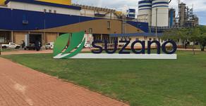 Suzano e do bem firmam parceria para uso de canudos de papel na linha de sucos bemzinho