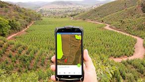 CENIBRA utiliza soluções tecnológicas para monitorar floresta