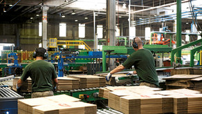 Aumento das vendas no setor de embalagem gera centenas de empregos