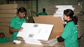 Indústria de papel deve crescer 8% neste ano