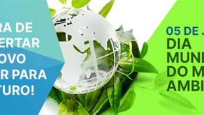 Gestão sustentável: é possível ter empresas lucrativas e preservar o planeta