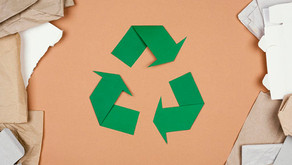Papel é alternativa viável para a economia circular