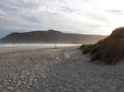 Allans beach at sunset