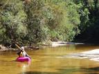 Paddling Berowra Creek