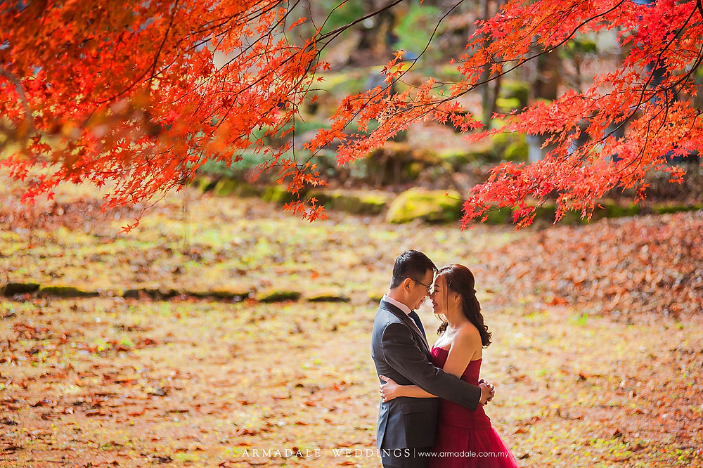 shirakawago japan prewedding