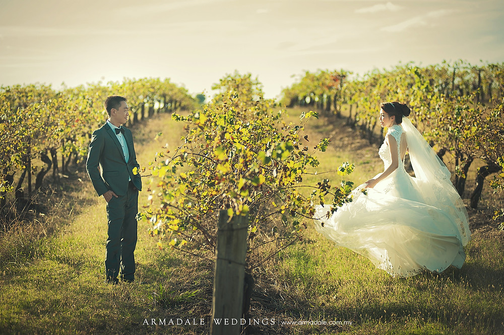 sunset vineyard prewedding australia
