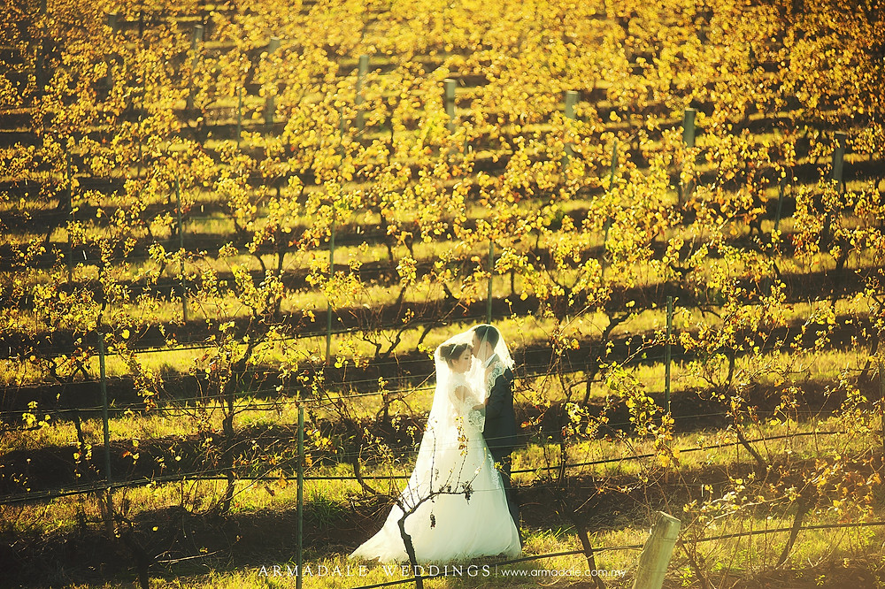 Australia vineyard wedding