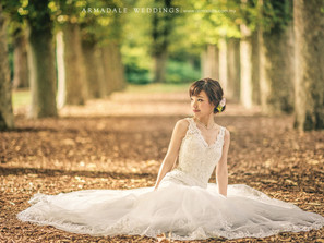 Our Collection of Bridal Gowns
