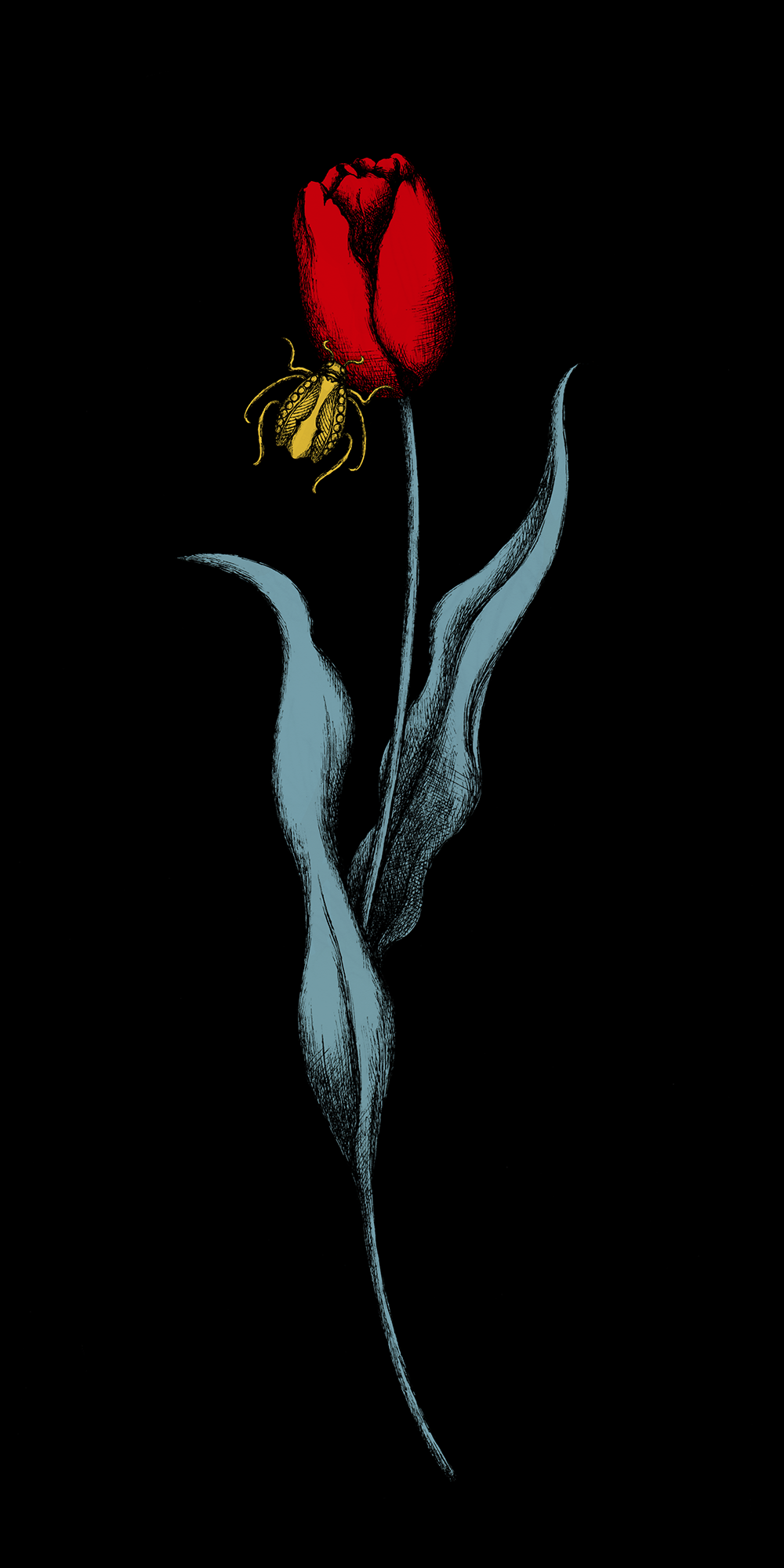 bloom9