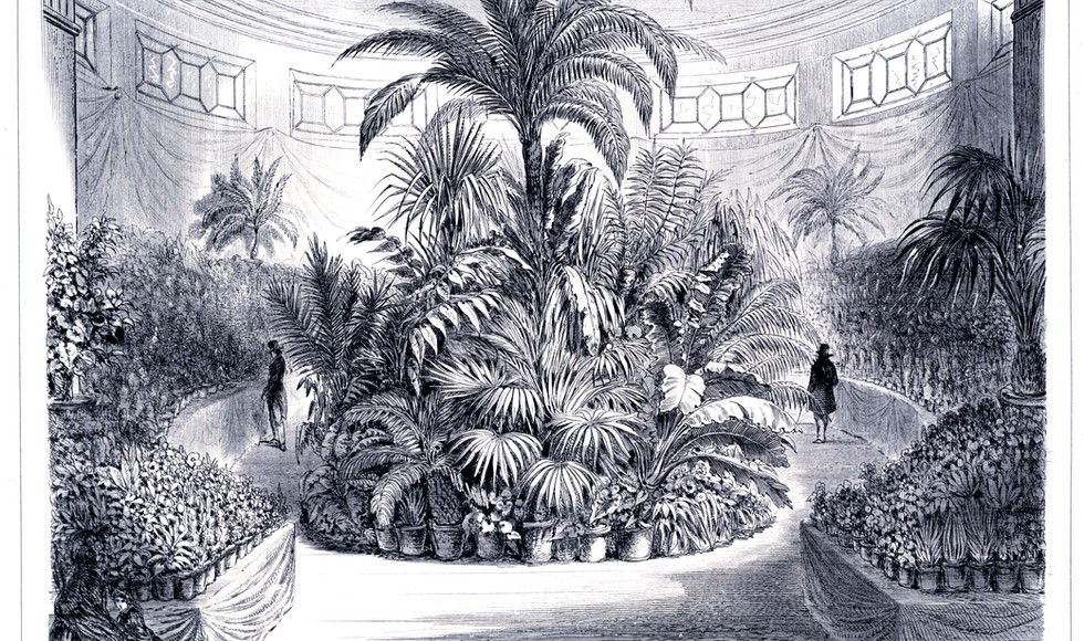 Five-year exhibition of the Royal Society for Agriculture and Botany in Ghent, 1857