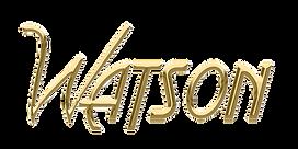 Logo du groupe de musique Watson