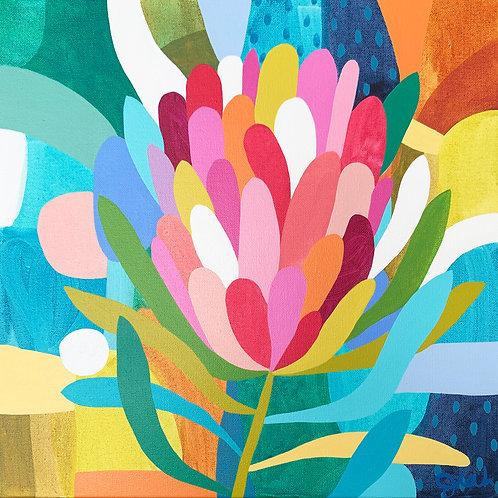Protea Dreams - Fine art print