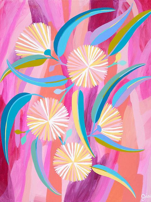 Flower Gum Sunset - Fine art print