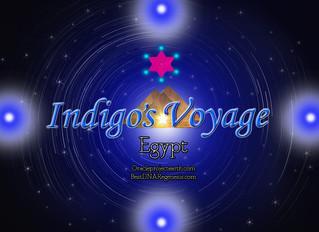 Beloved starseeds Indigo's