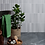 Thumbnail: Dolly Ceramic Pale Grey 5 x 25cm Price Per Sqm