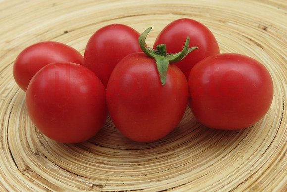 Tomate Pearly Pink