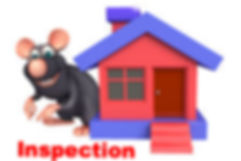 rodent inspection service