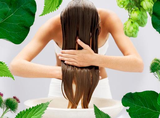 Як запобігти випадінню волосся та зміцнити його за допомогою природних засобів