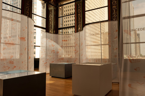 room fabric partitions