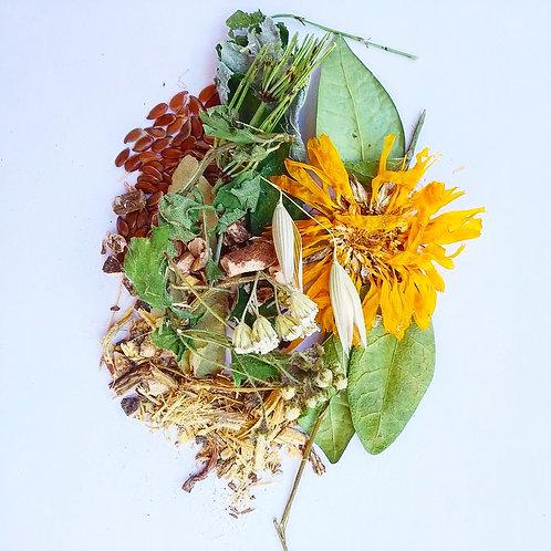 Травяной сбор при холестерине