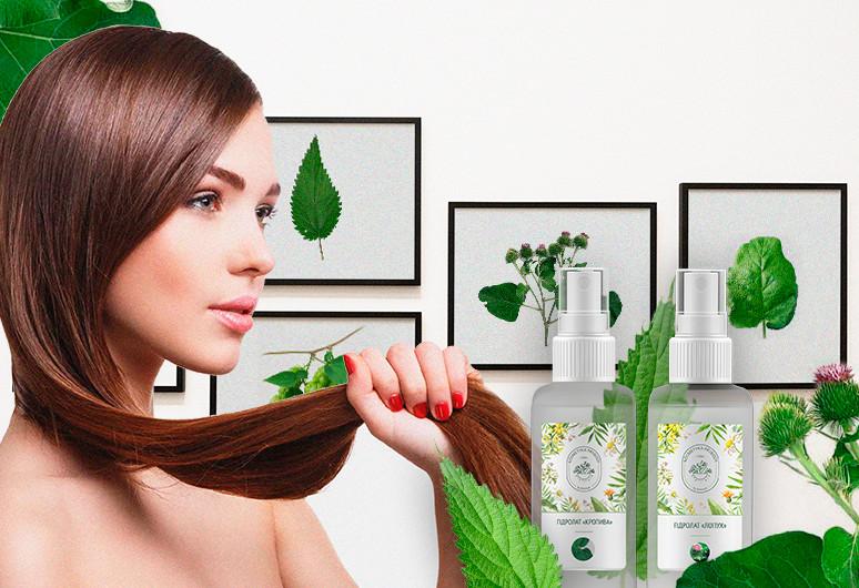 Гідролати при лікуванні випадіння волосся - zborovik.com.ua