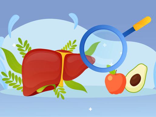 Фітотерапія захворювань печінки та жовчних шляхів