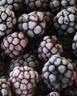 Frozen-blackberries_edited.jpg