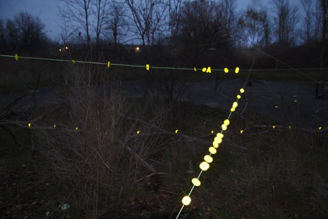 lights middle 2.jpg