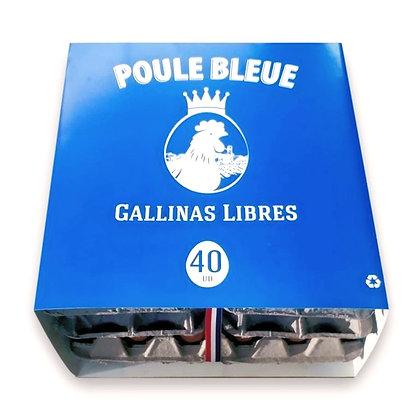 Huevos Poule Bleue Pack Extra 40u