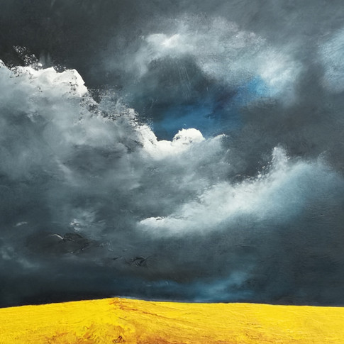 SOLD Rapeseed Under Gathering Storm