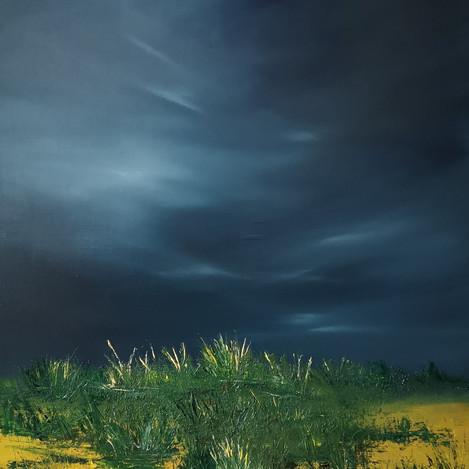 Storm Over Grassy Dunes