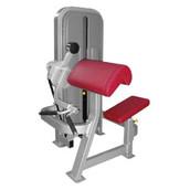 Biceps G010.jpg