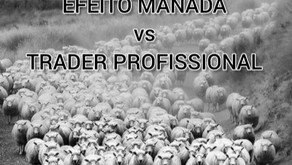 FOREX BRASIL | MERCADO FOREX | MERCADO FINANCEIRO - EFEITO MANADA vs TRADER PROFISSIONAL