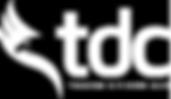 Forex para Iniciantes I Traders Division