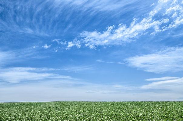 blue-sky-1348634_1920.jpg