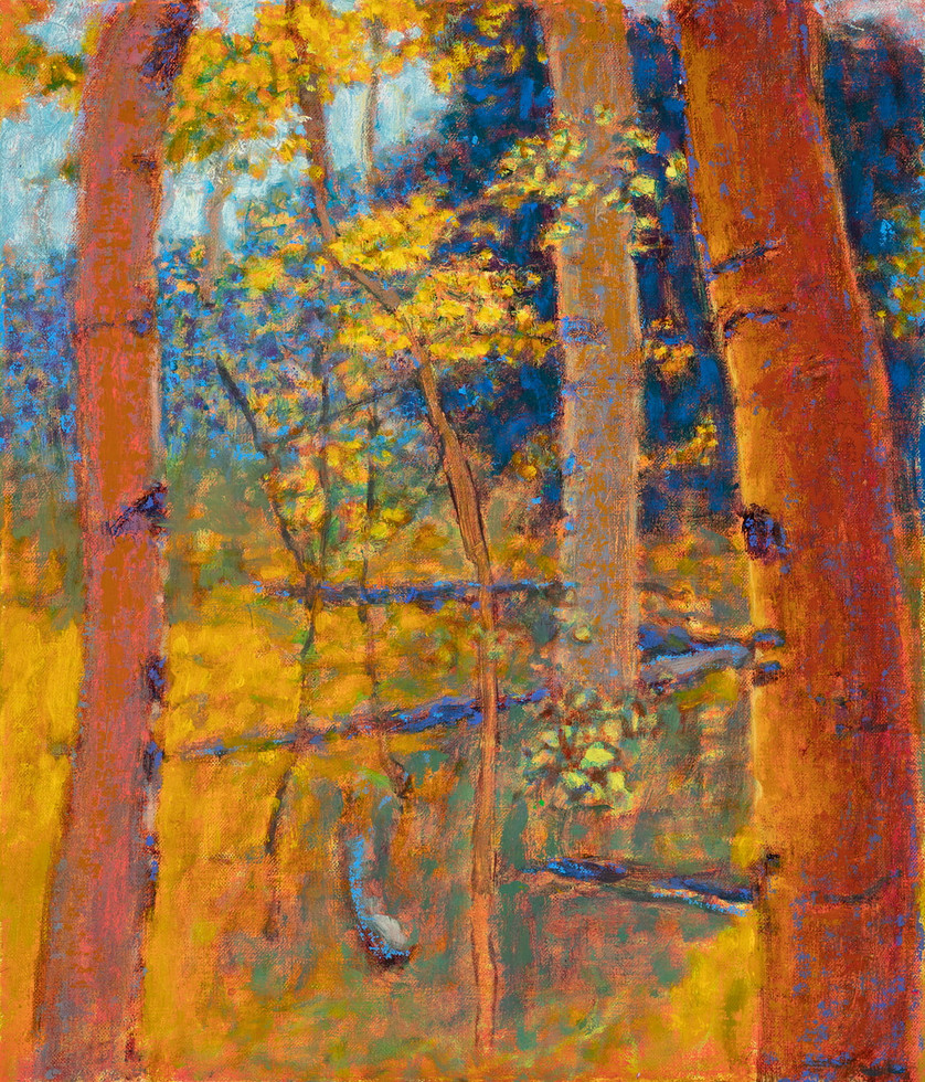 'High Mountain Aspens'