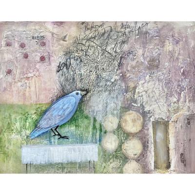'Blue Bird'