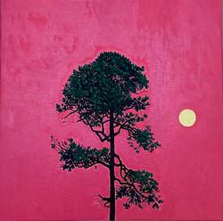 Tree Nature 20 - Angela Summerfield
