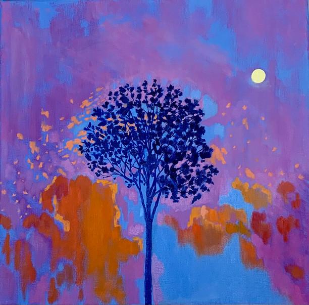 Tree-Nature Portrait  (17)