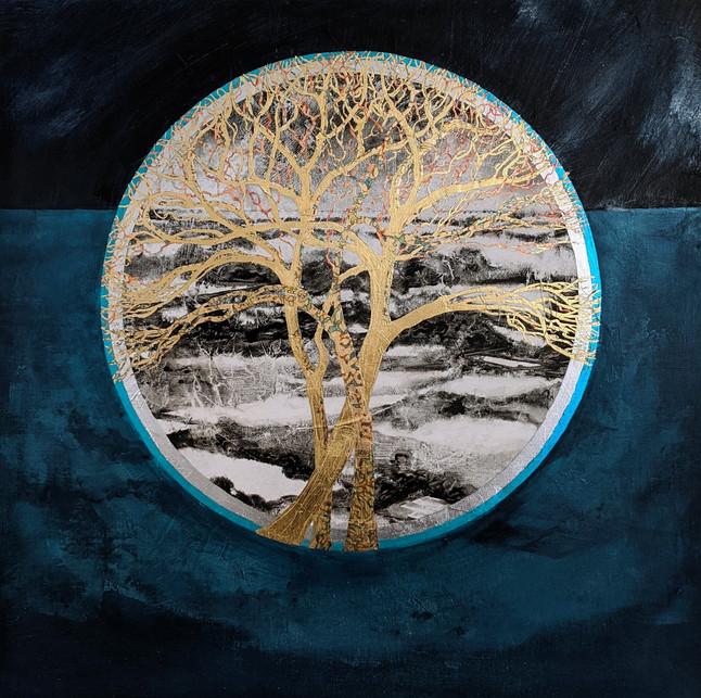 'Circle of Life / Dark Interior II'