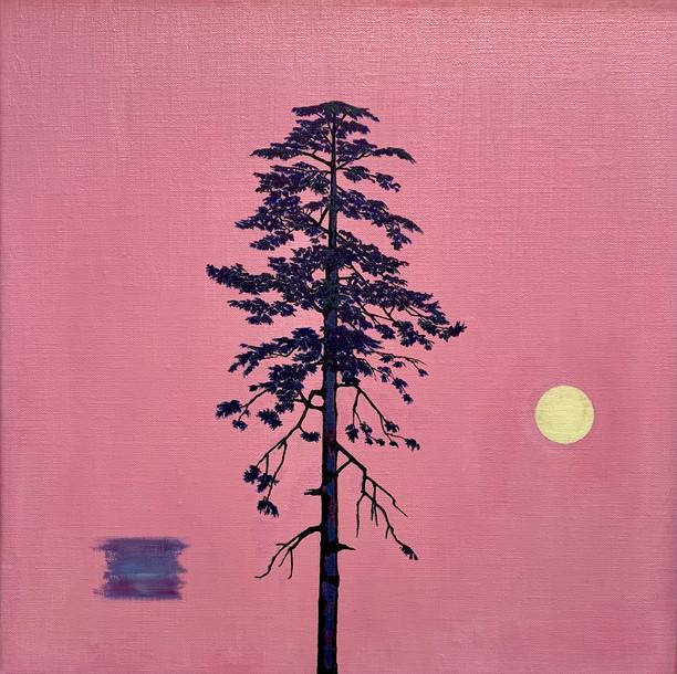 Tree-Nature Portrait (5)