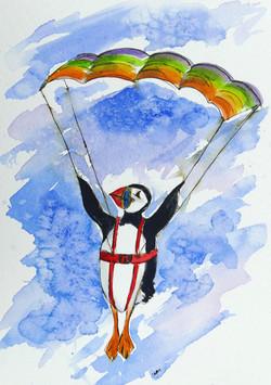 puffin parachute 21 x 31 cm 16 copy