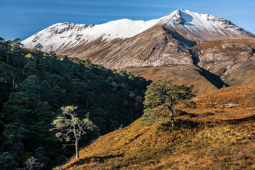 Autumn colours and light snow cover on Beinn Eighe, Wester Ross.