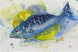 fat mackerel