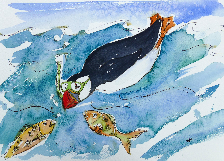 snorkel puffin 33 x 23 cm 16