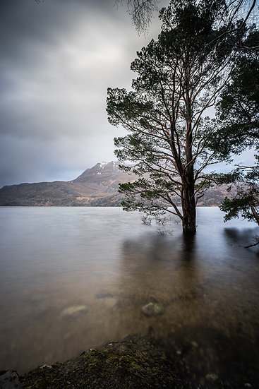 High waters, trees submerged in Loch Maree