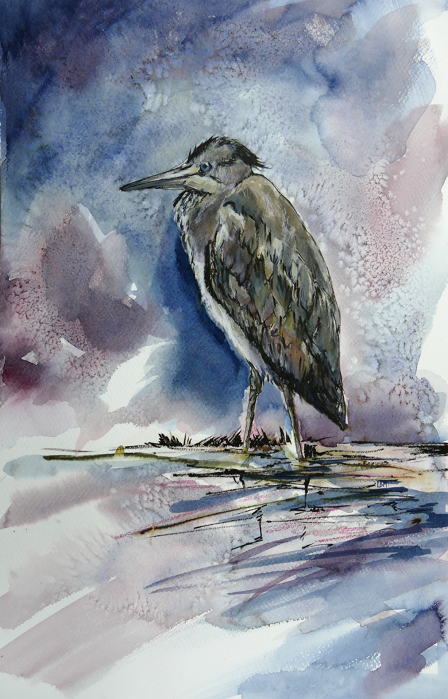Heron - 29 x 45cm - pen, ink, watercolour