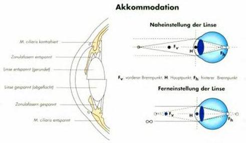 Akkommodation