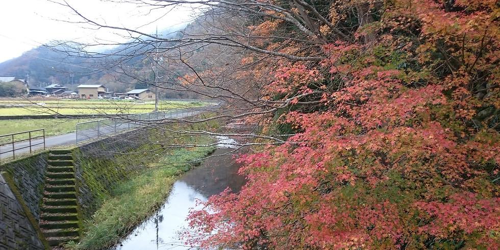 【2021年10月定例会】秋の夜長、ひやおろし/秋上がりを楽しむ会 ~ 新酒も出るかも!?